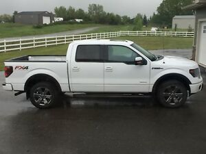 2013 Ford F-150 FX4, loaded, only 49,000kms, original owner