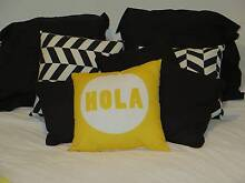 Throw Pillows and Blanket Stanmore Marrickville Area Preview