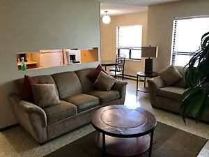 ACROSS FROM LU - 1bdrm furnished unit