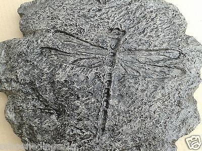 TRITTSTEINE TRITTSTEIN Libelle granit marmoriert Trittplatte Stein Garten Haus