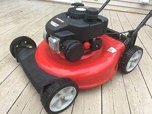 Lawnmower with Bag and Cover (9 months old)