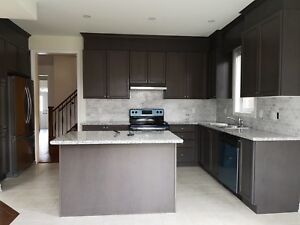 Kitchen Cabients and Counter top
