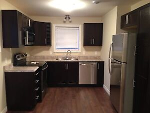 2 BR Basement Apartment in Kenmount Terrace. Available Aug 1st!