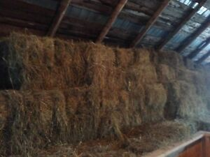 2017 hay stored inside