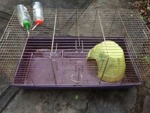 Large Rabbit/Guinea Pig Cage Ourimbah Wyong Area Preview