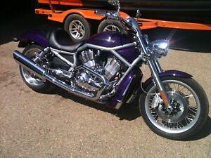 2008  Harley Davidson V-Rod for sale