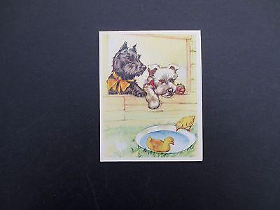 #K946- Vintage Unused Greeting Card Scottish Terrier Dogs & Ducks in Water Bowl