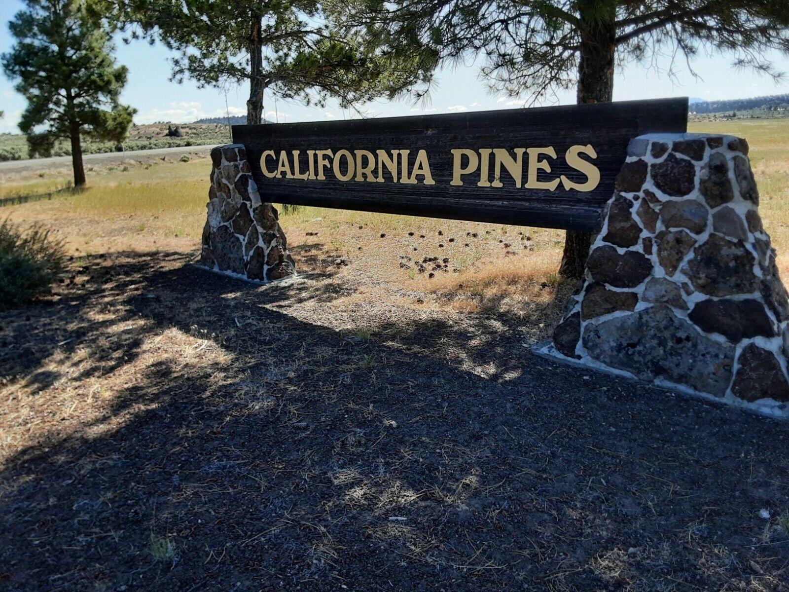 California Pines Mobile Home Lot, Modoc Co,- Bidding Begins At 1 NO RESERVE - $212.50