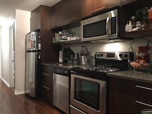 For rent: furnished 2 bedroom apartment in The Glebe