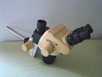 Leica Trinocular Stereo Microscope Gz6e Photomicroscopy