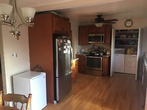 1yr old kitchen cabinets