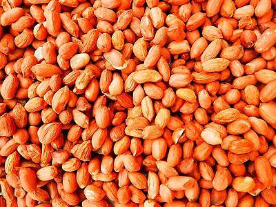 Economy Peanuts Bird Food 25 kg