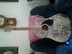 DUCKS UNLIMITED GUITAR