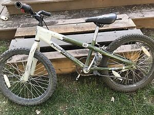 "20"" Norco ZX80"
