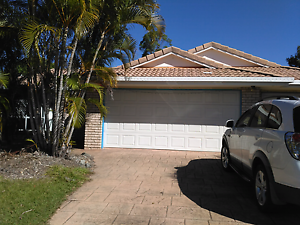 2 rooms to rent Sippy Downs Sippy Downs Maroochydore Area Preview