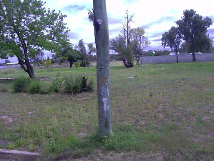 Lease a permanent physical address in australia. Burwood Burwood Area Preview