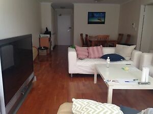 Bed available in a double bedroom Bondi Junction Eastern Suburbs Preview