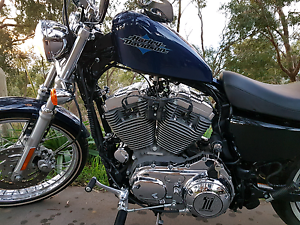Harley-Davidson Sportster Seventy-Two Magill Campbelltown Area Preview