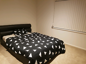 Room available for rent Franklin Gungahlin Area Preview