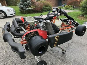 Rotax 125 go kart with stand and extras
