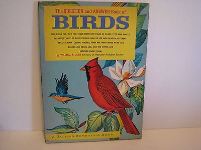 The Question and Answer Book of Birds William A. Jerr vintage children's 1963