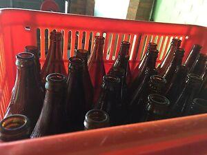 Empty Beer Bottles -Home Brewing Raceview Ipswich City Preview