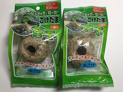 100% Natural Moss Ball BONSAI KOKEDAMA 2 Ball set Sphagnum Moss Made in japan