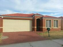 4x2 Home For Rent Cannington Canning Area Preview