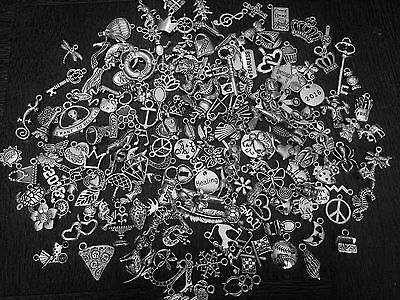 Lot of 100~ Mixed Theme Style Silver Charms Pendants / Jewelry Free USA Shipping