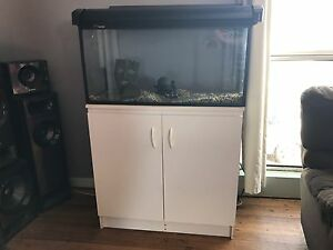 Fish tank and cupboard Acton Burnie Area Preview