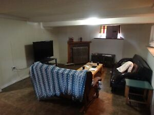 LARGE ONE BEDROOM BASEMENT APT ON GLADSTONE NEAR LIFESAVER PARK