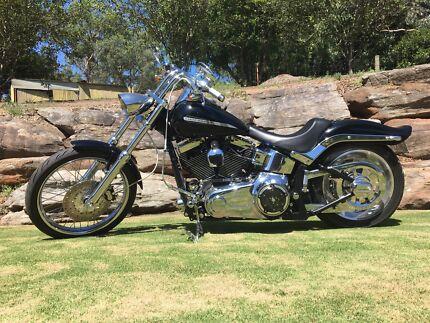 Harley Davidson Softail Custom
