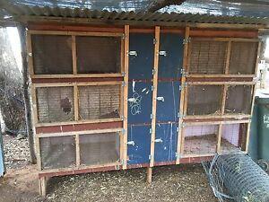 Rabbit hutches Sunshine North Brimbank Area Preview