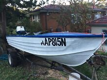 13ft Tinny, 40HP, Minn kota, all rego'd, great boat. Frenchs Forest Warringah Area Preview