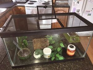 Gecko/Reptile cage and accessories for sale!
