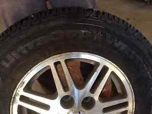 Studded Winter Tires - NEW!