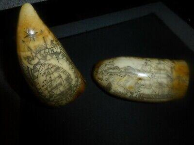 "Genuine ""Scrimshaw"" Whale Tooth Ship's Dakota & Lion-Excellent"