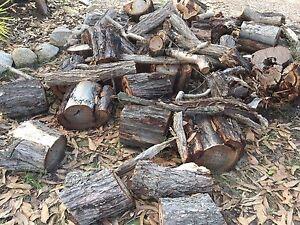 Firewood - free Greenbank Logan Area Preview