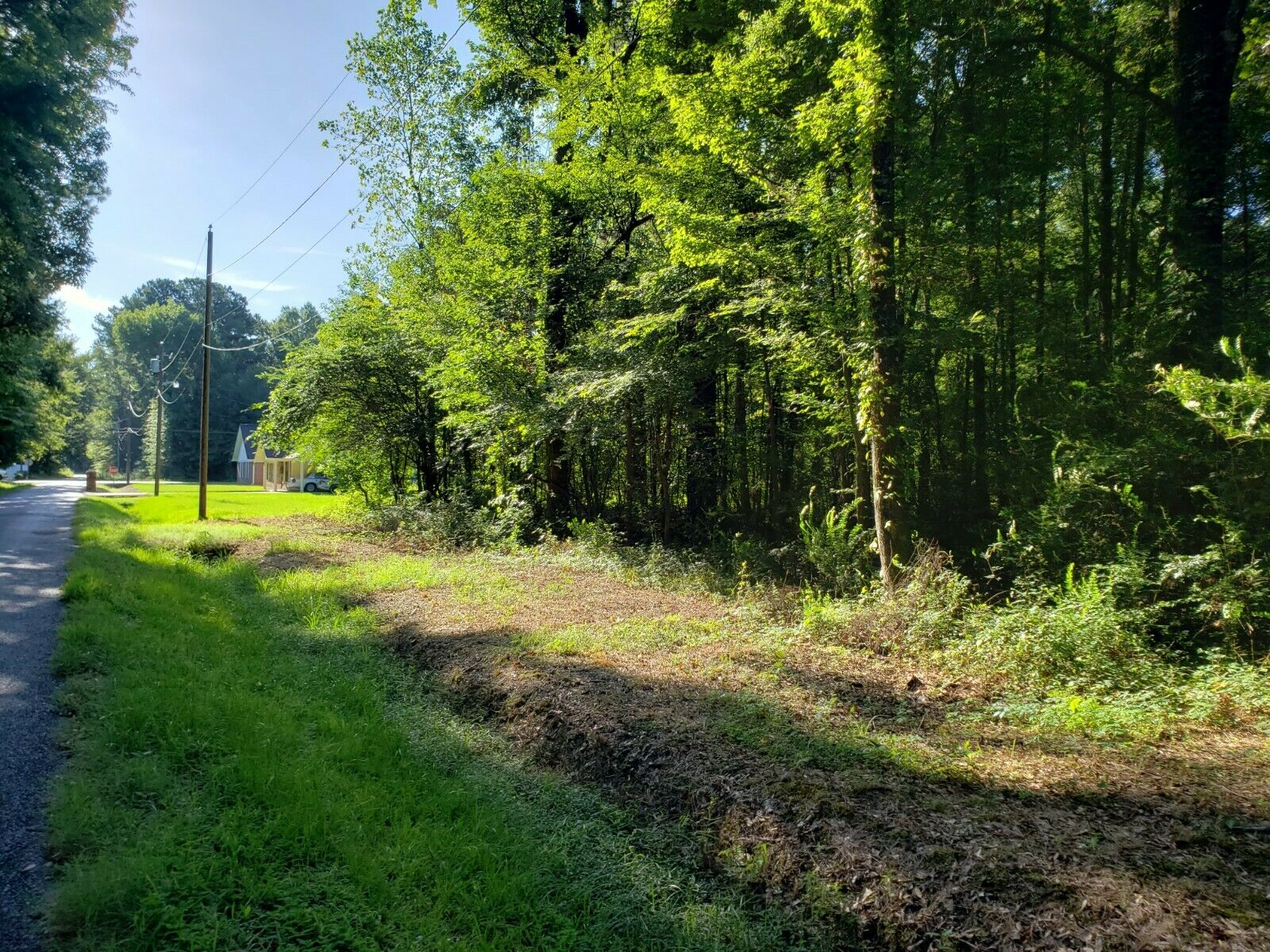 .14 Acre Wooded Lot For You To Build Or Keep As An Investment. - $1.50
