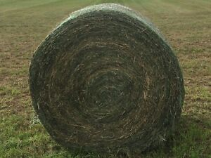 Hay for sale-round bales and square bales