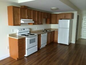 1BR - Minutes to Downtown - 5 appliances, underground parking