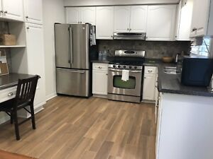 Kitchen laminate countertop and cabinets for sale