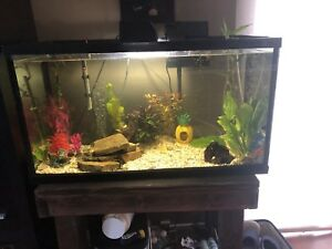 MAKE AN OFFER! 49 Gallon Fish Tank and stand