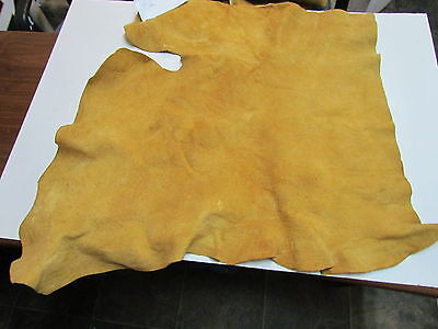 """MOOSE HIDE NATIVE AMERICAN DARK COLOR HOME TANNED HIDE 33"""" BY 35"""" SMALL, SEWING"""