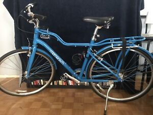 Bike for Sale - Momentum Bike - Vintage Style