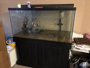 120 Gallon Fish Tank With stand/Filter/Heater and decorations