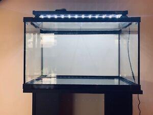 Aquarium - fish tank