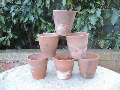 6 Old Hand Thrown Vintage Terracotta Plant Pots 4