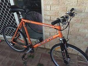 "26"" (L) 55cm 21spd Avanti Hurricane comp Mountain Bike Waikiki Rockingham Area Preview"