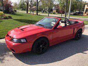 2003 SVT Cobra Mustang
